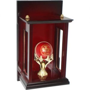 Cricket Ball Display Case T4014