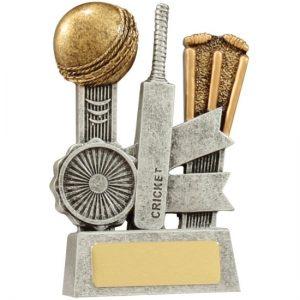 Cricket Silver Ribbon Series