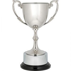 Recognition Cup