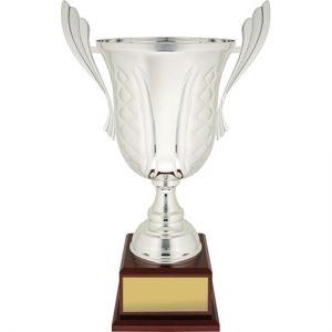 Celebration Silver Metal Cup