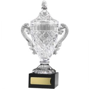 Crystal Cup