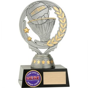 Silver Netball With 25mm Centre