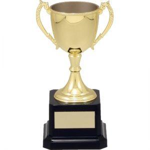 Gold Engravable Cup
